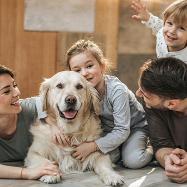 Porodica & Dom